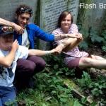 Flash Bang Band