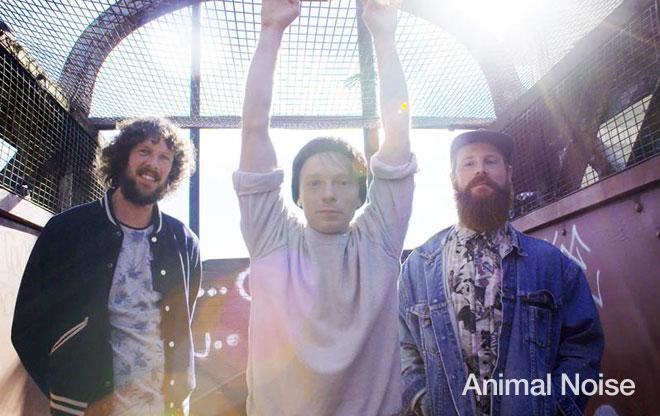 Animal Noise